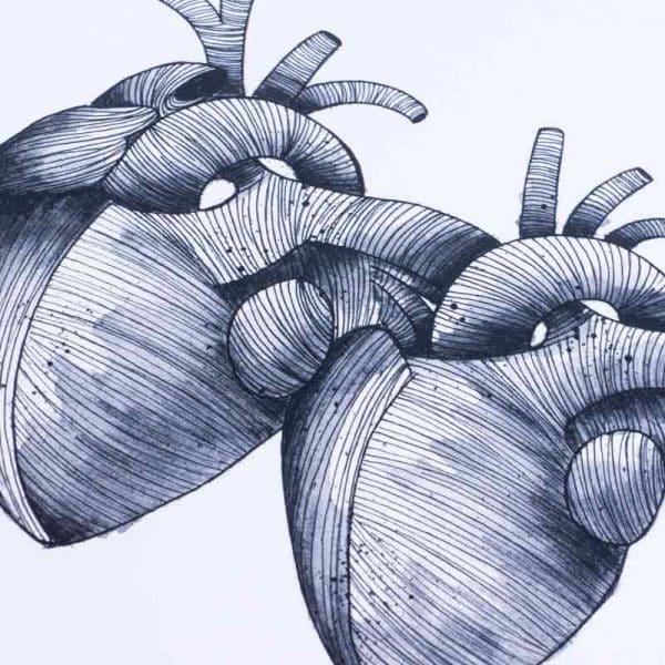 Ilustracion Corazones Siameses
