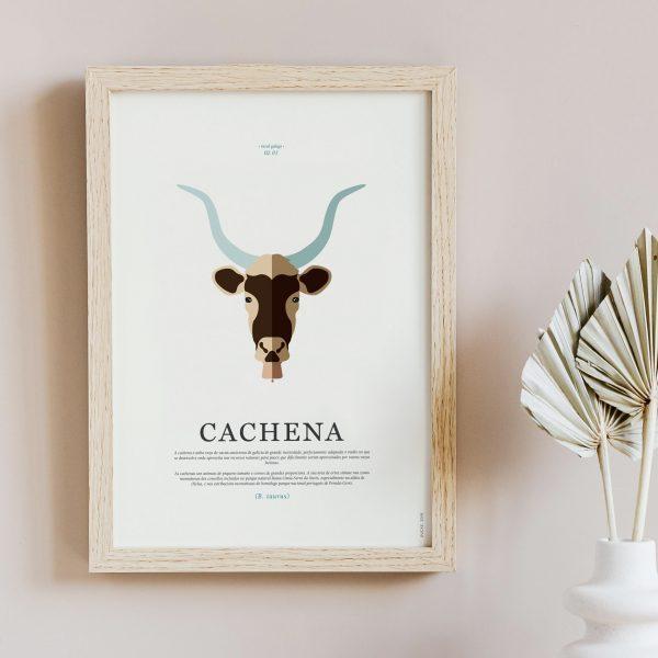 cachena