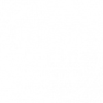 Vaidhé Logo